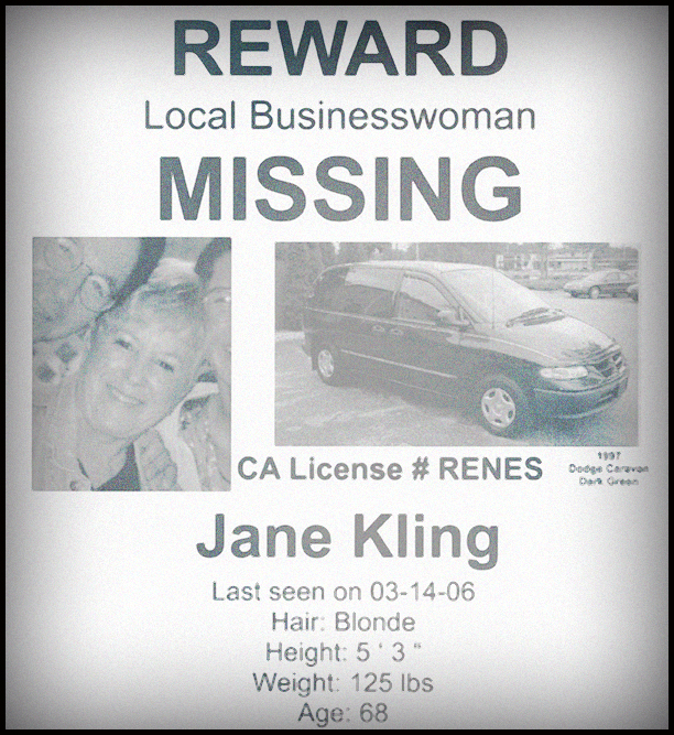 Lauri-Taylor-missing-woman-poster.jpg