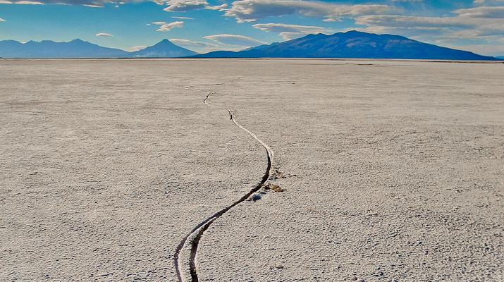 Condor_Tracks