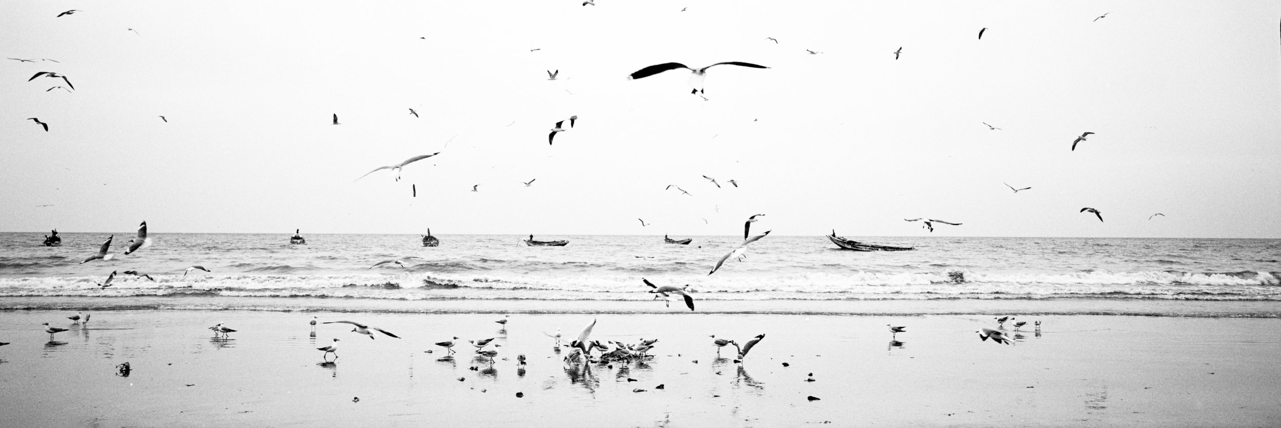 Landscape photography-9.jpg