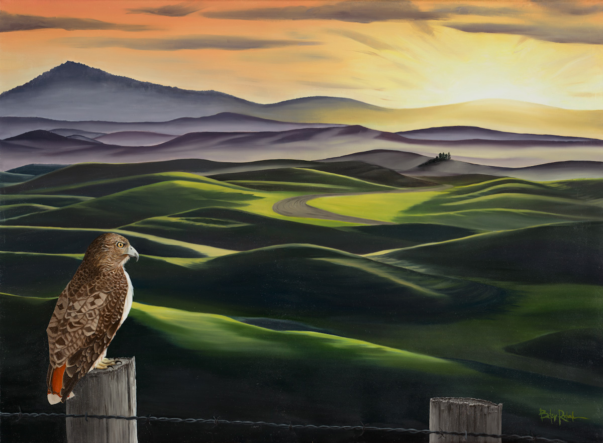 A New Day Rises over the Palouse