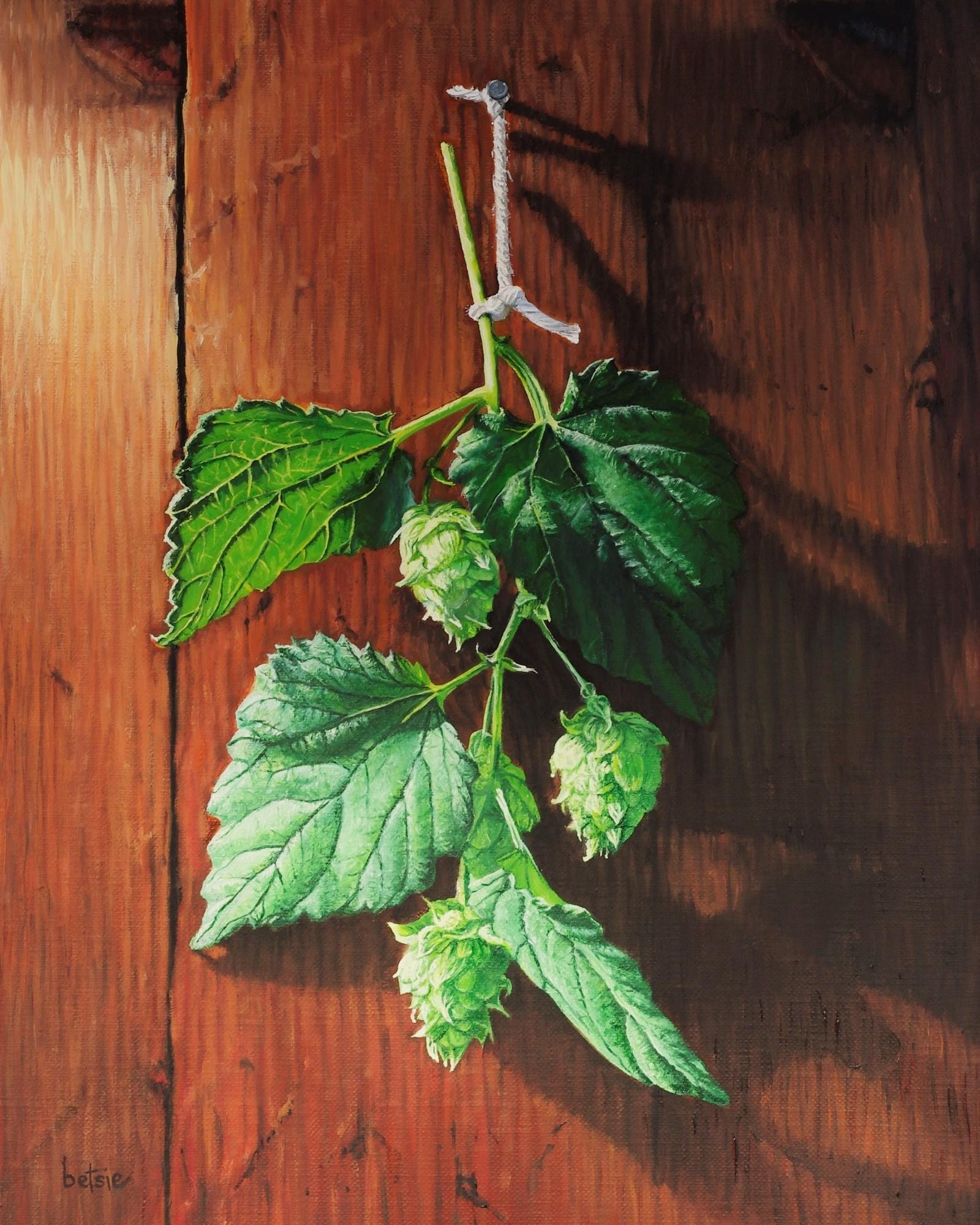 Hop Mistletoe