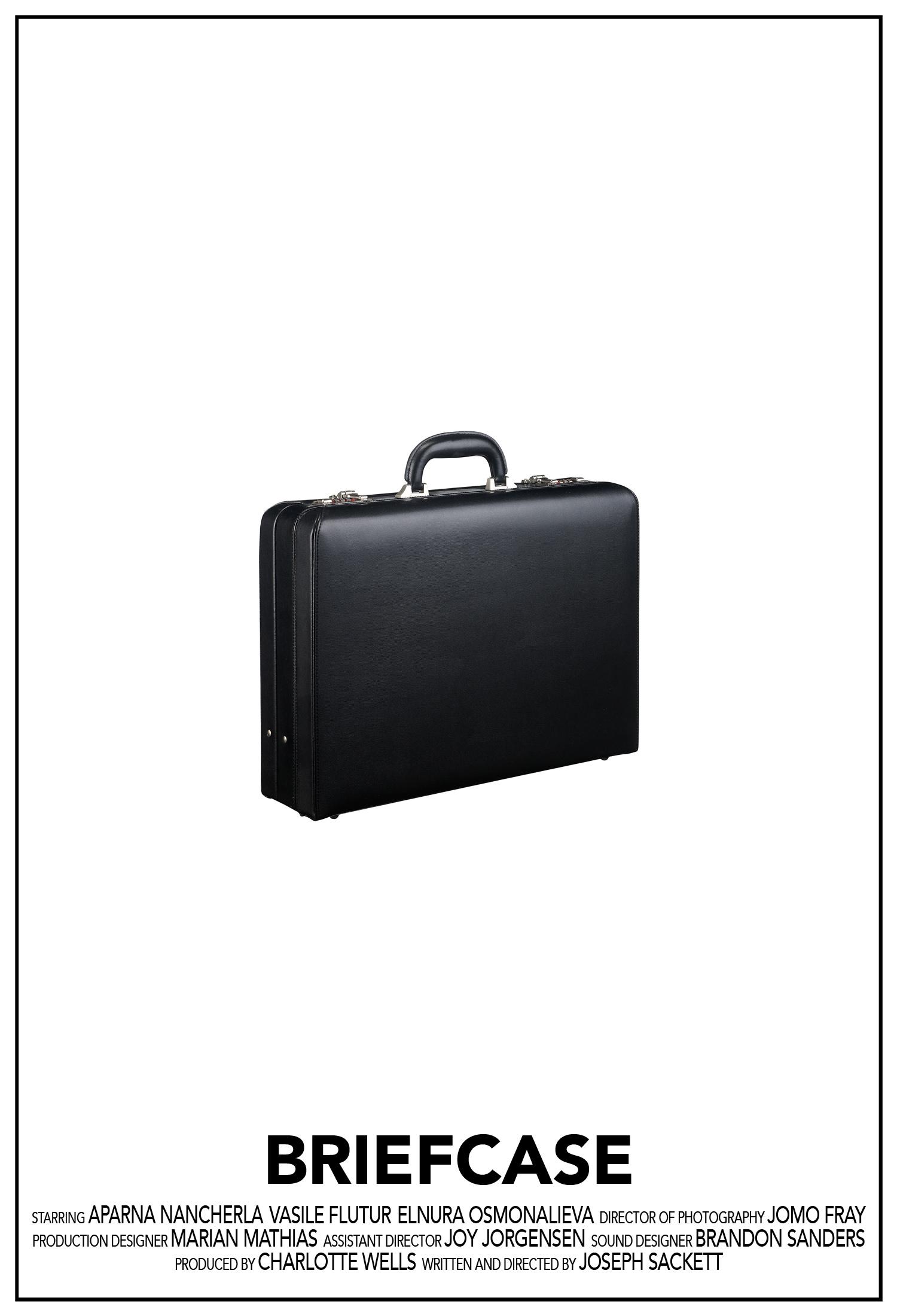 Briefcase_Poster_1500.jpg