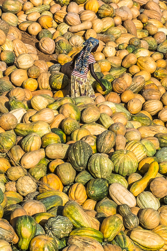 A girl navigates thousands of squash at the banks of the Niger River.