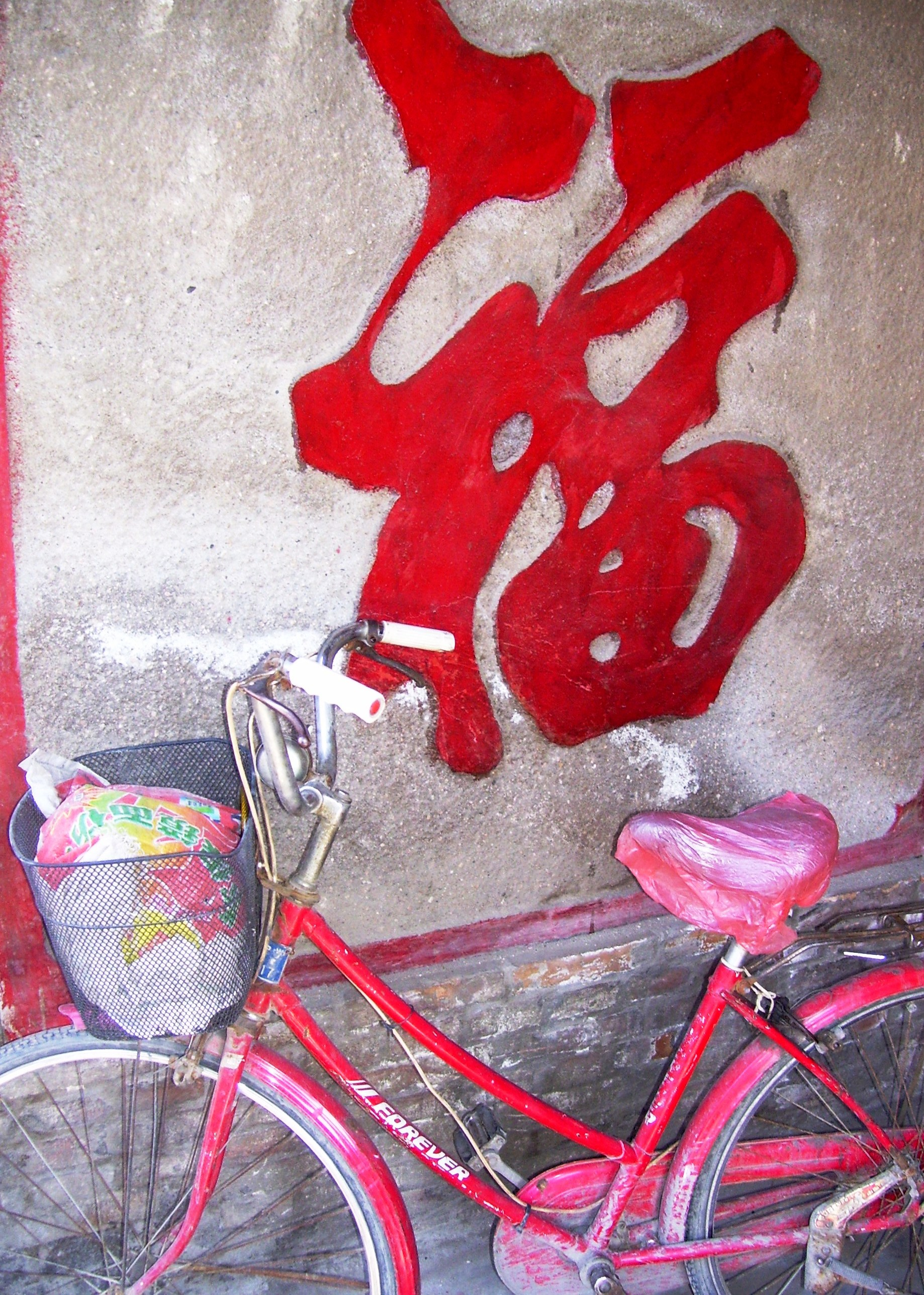 China Bycicle 8x10.jpg
