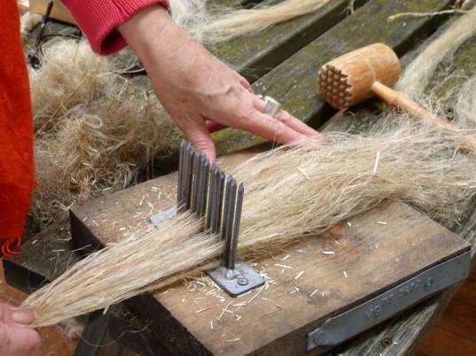 cordwainers-grow-seeds-of-fashion-flax-1-537x402.jpg