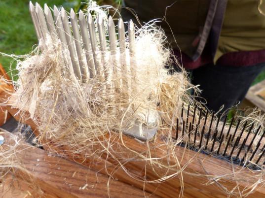 cordwainers-grow-seeds-of-fashion-flax-4-537x402.jpg