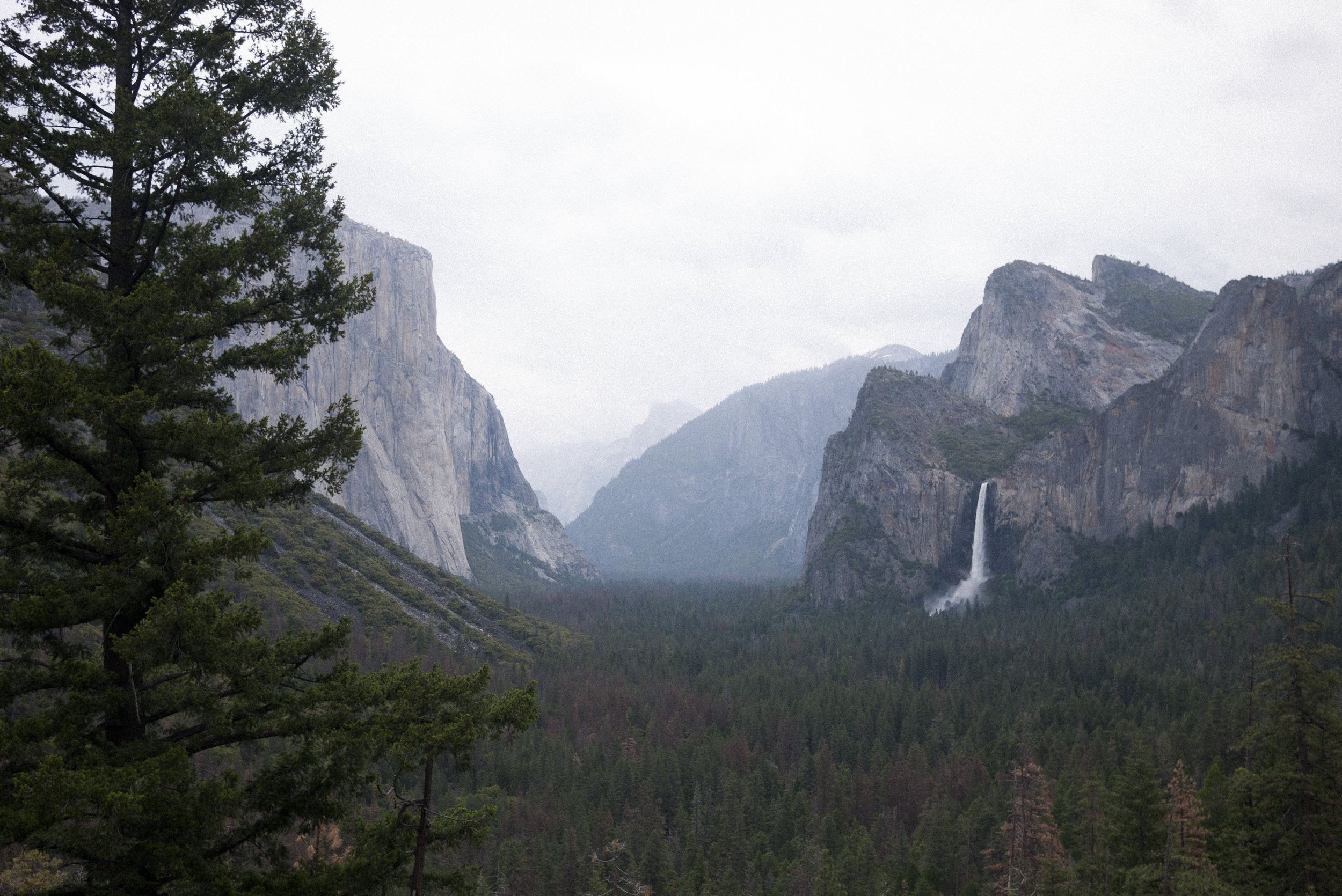 Yosemite(2 of 10).jpeg