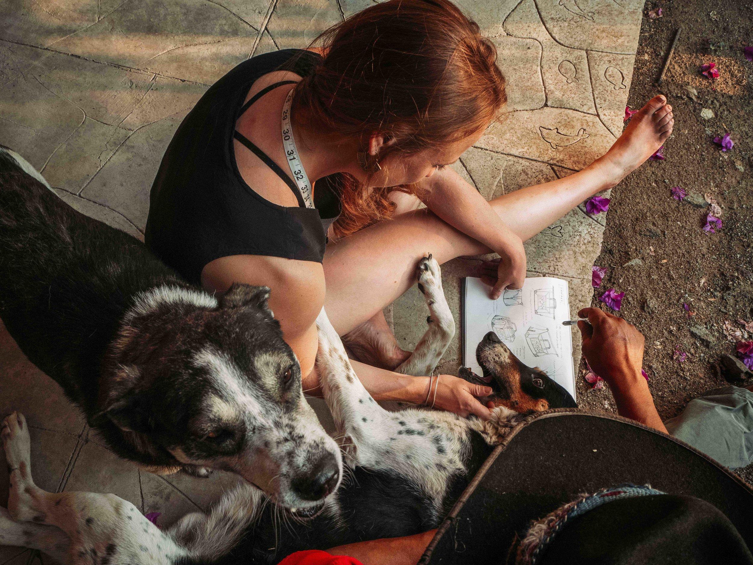 Ali Sam Dogs 12.12.55.jpg