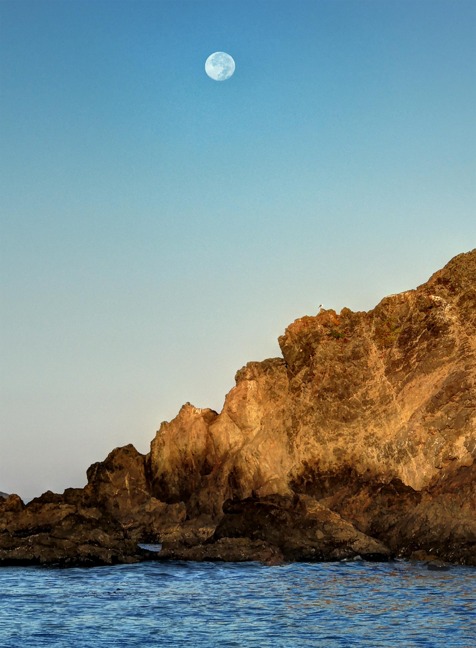 Moonset Sunrise.jpg