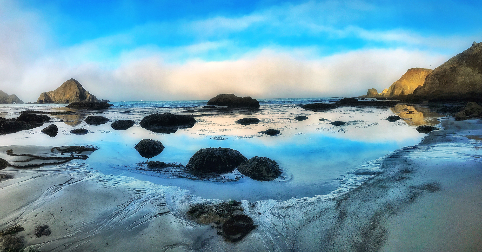 elk beach reflections.jpg