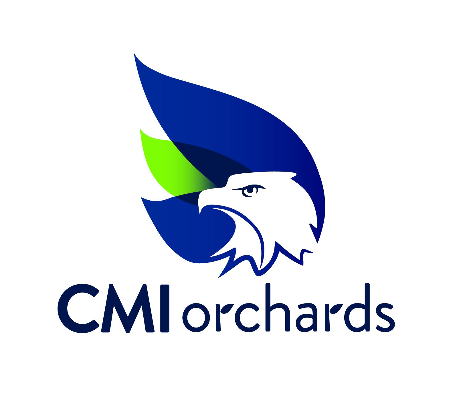 CMI logo_final-01.jpg