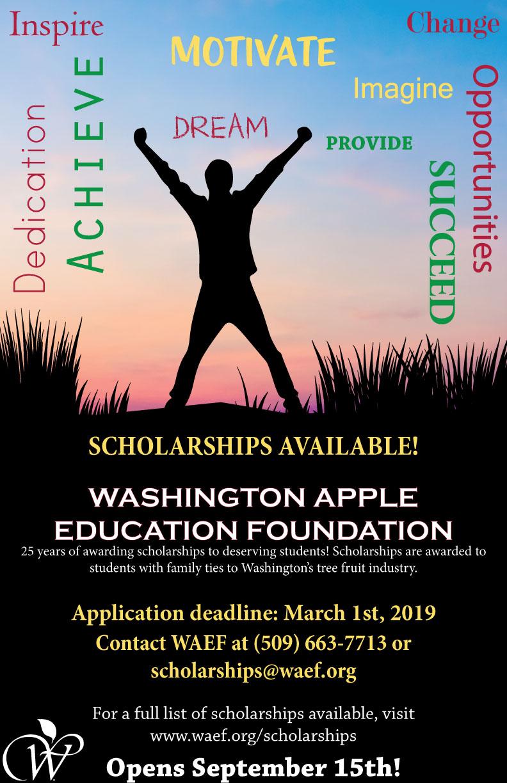 Scholarship-promo-poster-english-web.jpg
