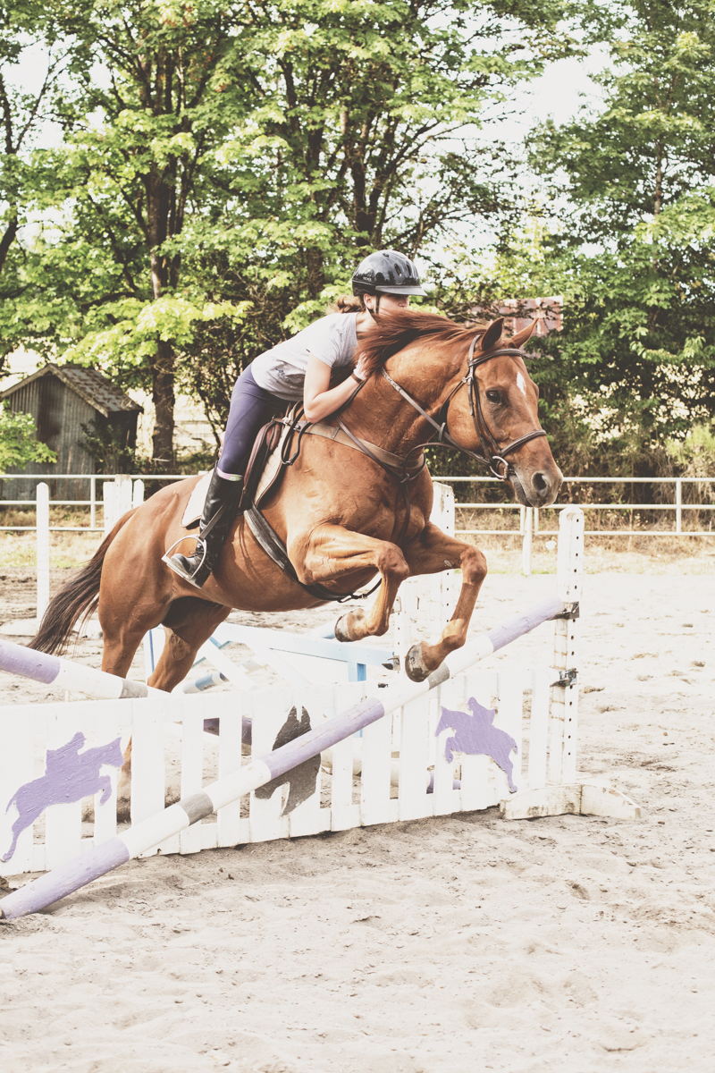 Hannah jumping Horatio.