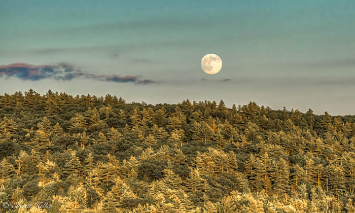 Super Moon from King Pine.jpg
