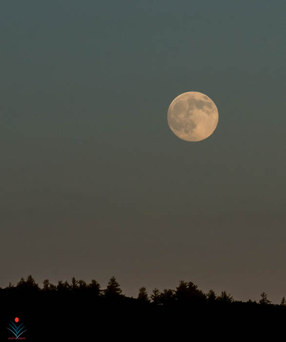 Super Moon Close-Up from King Pine.jpg