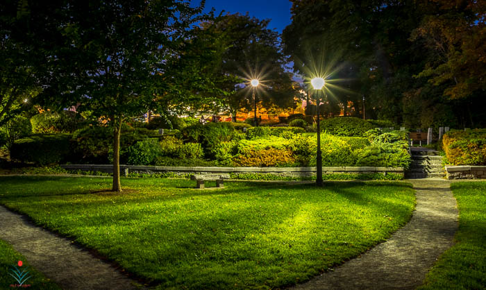 Night at the Park in Wolfeboro