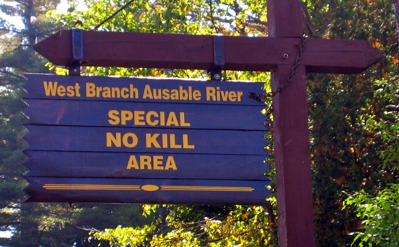 No-Kill zone on Ausable River, Lake Placid