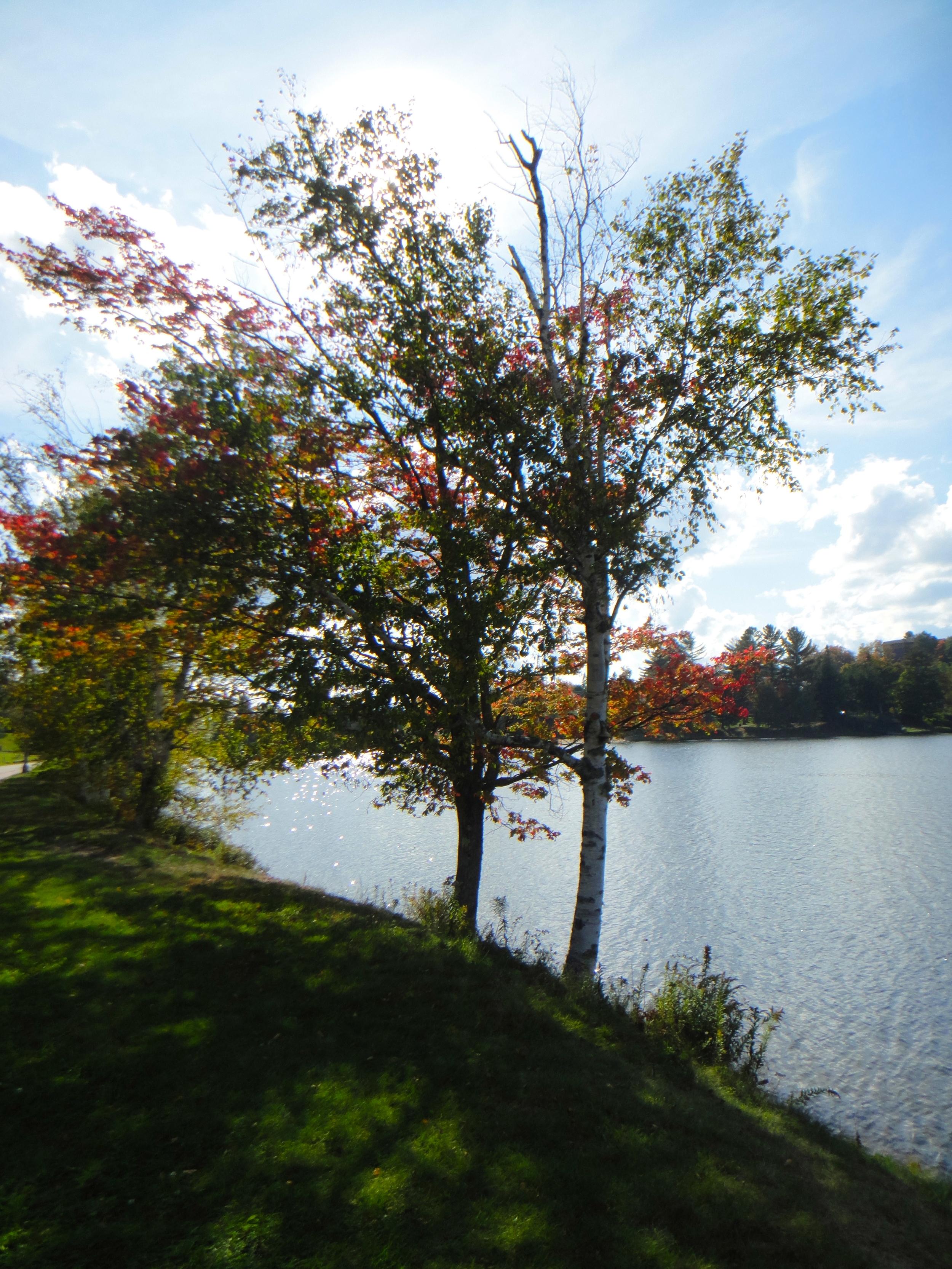Mirror Lake fall foliage and colors