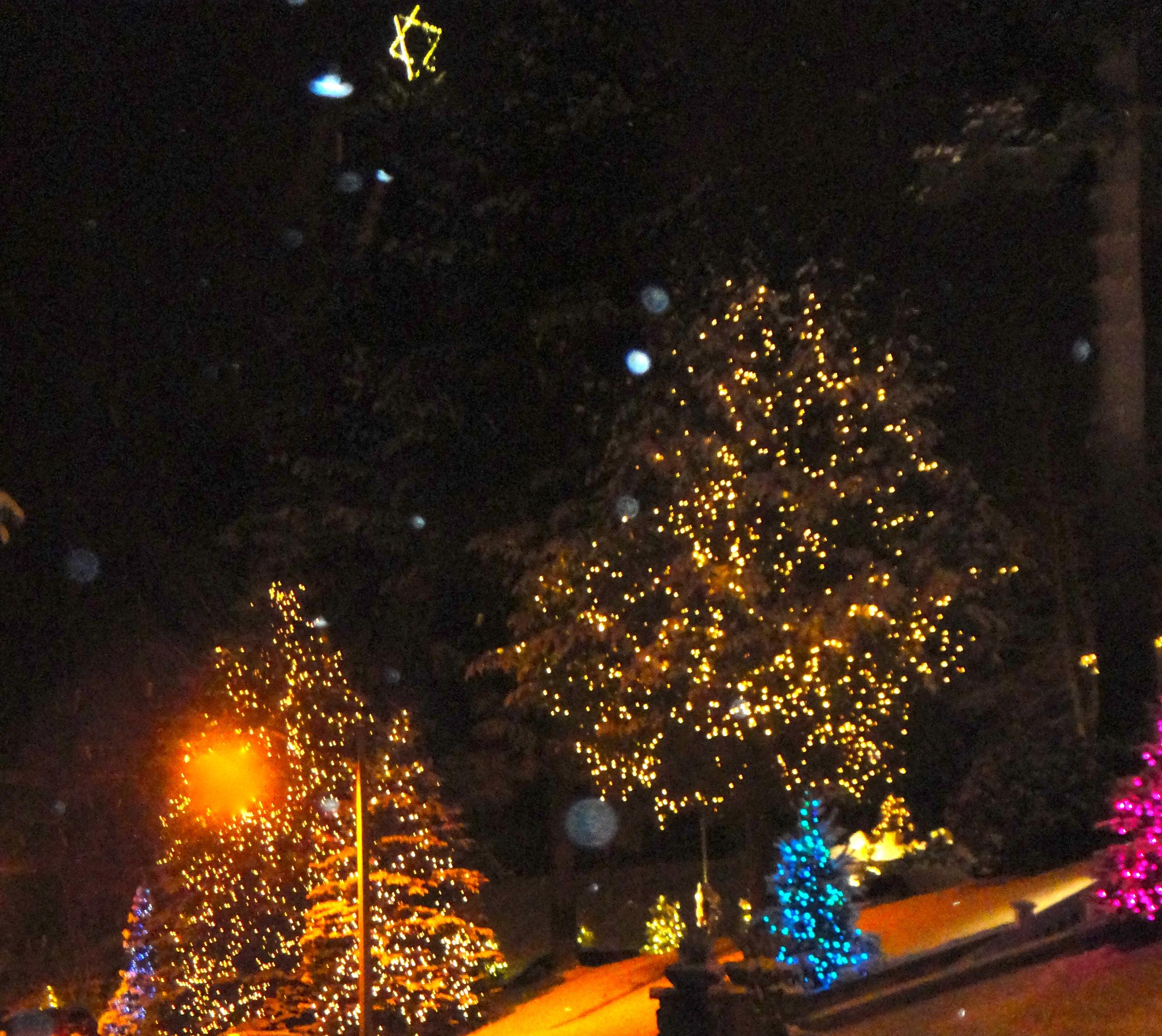 Festive Mirror Lake Inn lights