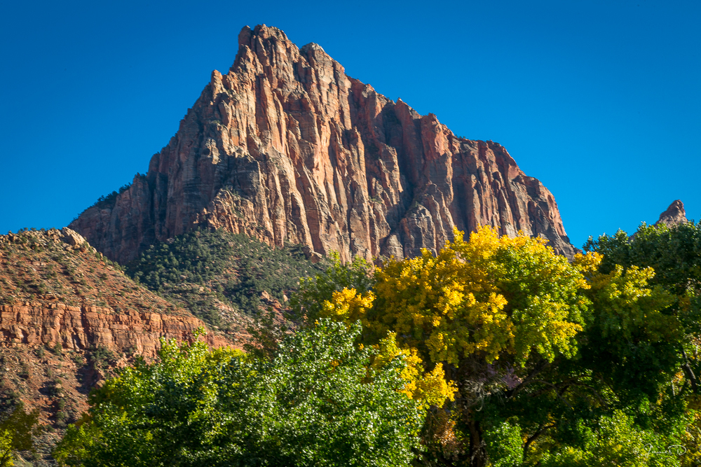 "The ""Watchman"", stands over the Virgin River as it runs through Zion National Park"