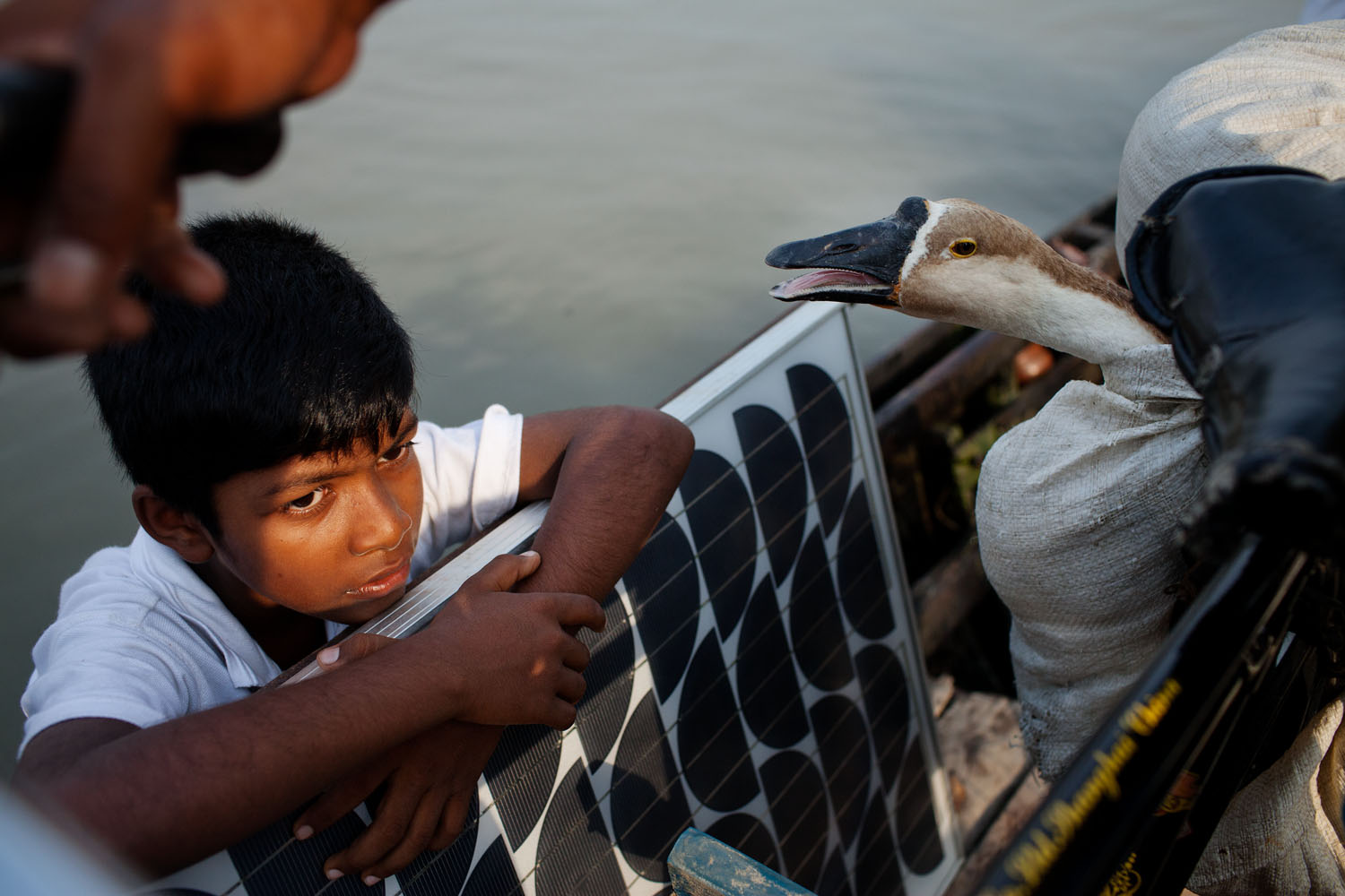 After the hurricane Aila hit the coast of Bangladesh in 2009, thousands of people moved their homes to safer areas.