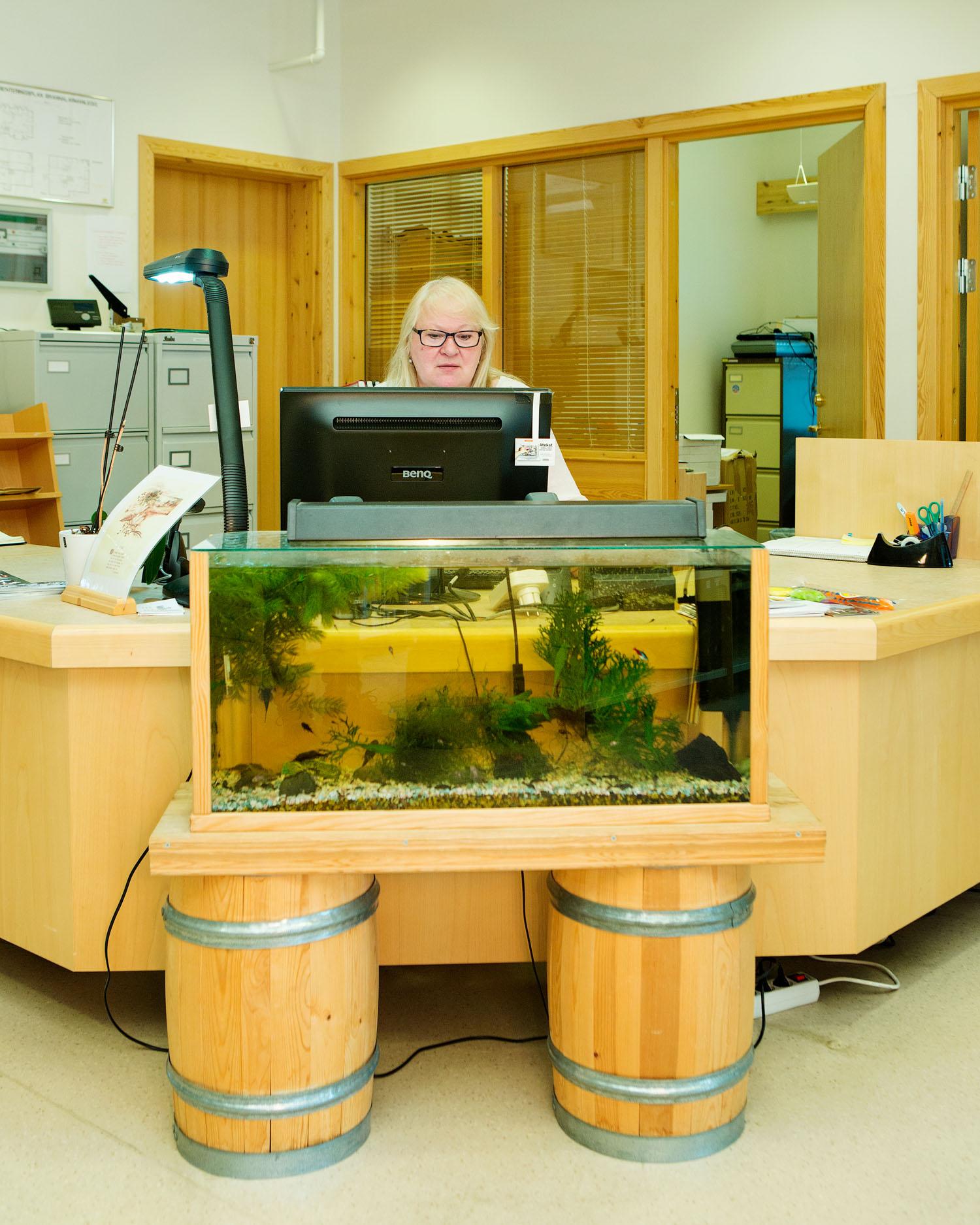 Nordreisa bibliotek  Biblioteknr.: NO-2194200 Nordreisa, Troms Fotografert: 2015  «Ingen dag er lik, og man vet aldri hvem som kommer innom, det er spennende. Blant ungene er akvariet særlig populært.»   Gunn-Lill Johansen har jobbet ved Nordreisa bibliotek på Storslett siden juli 1996, men tok fagutdanning og ble ferdig utdannet bibliotekar i 2005.