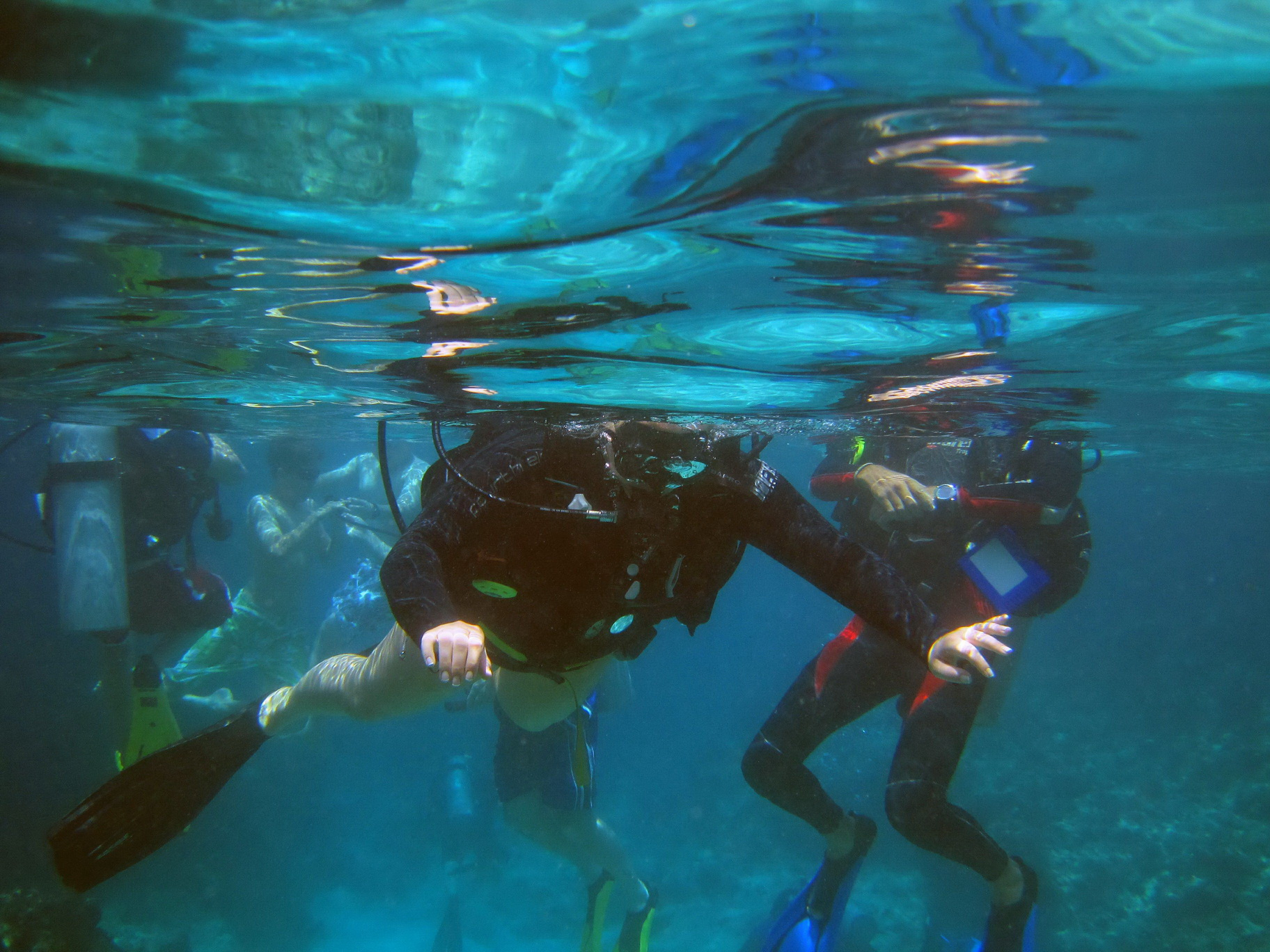 Students learning to dive!