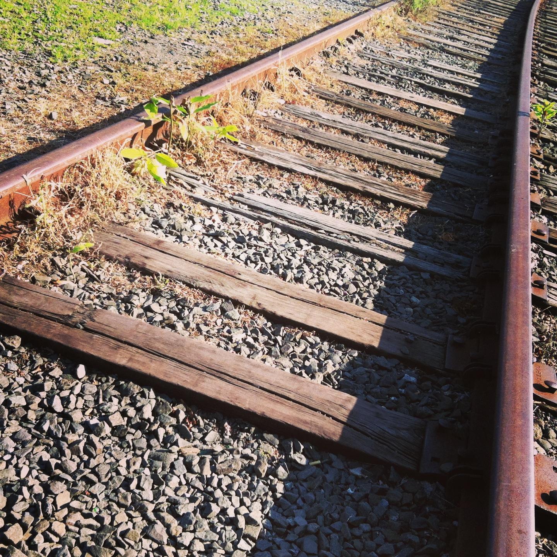 Education - the intellectual railroad.