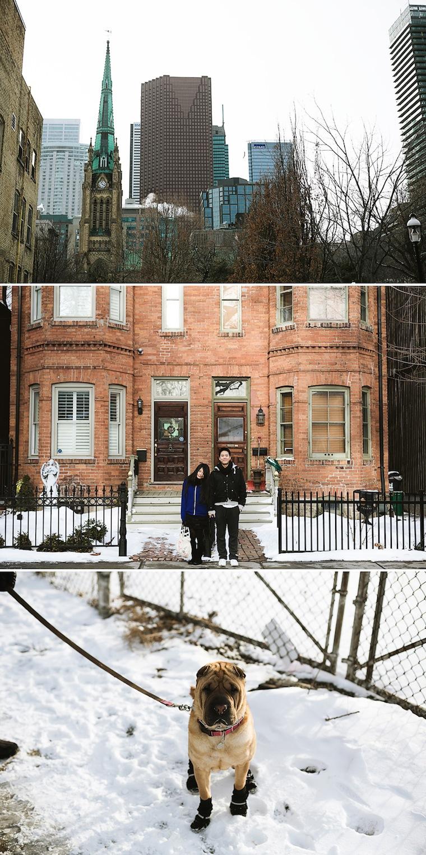 Torontocomp005.jpg