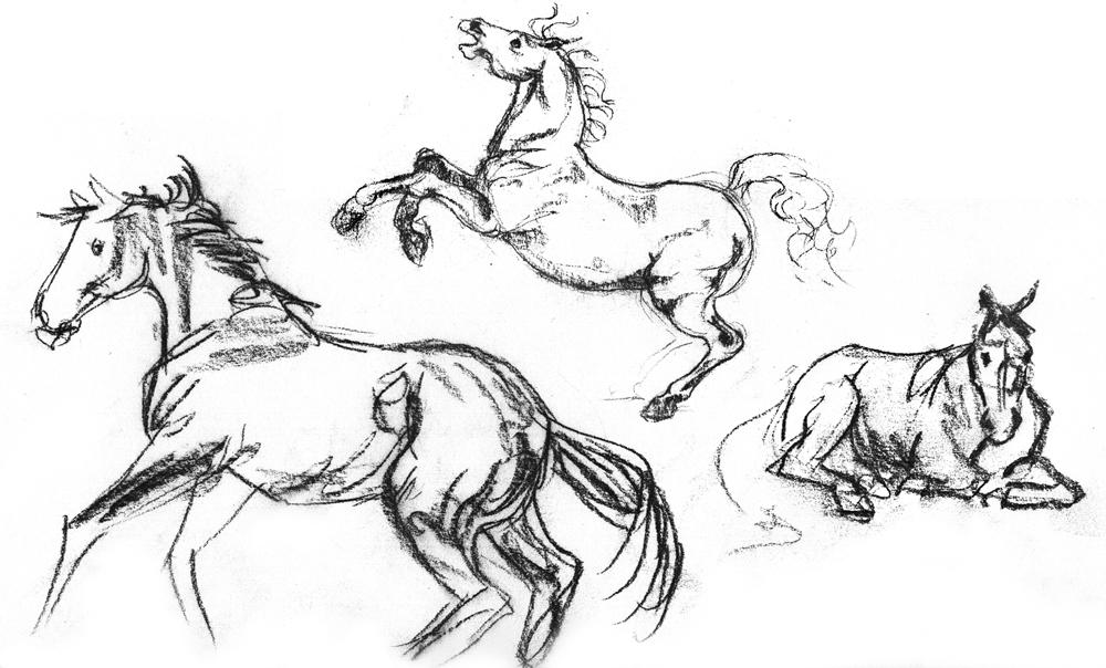 HorseSketches_2.jpg