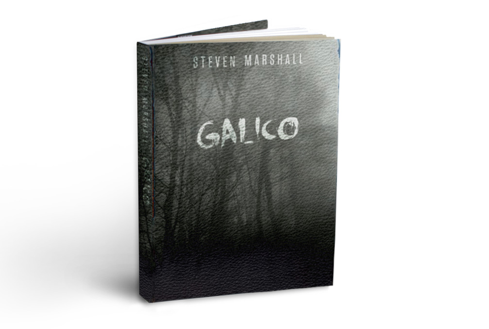 Galico  // Book Cover design for the great writer, Steven Marshall