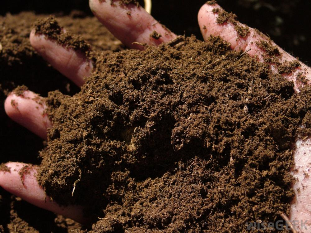 Instor Lnd Soil Products The Redwood Store