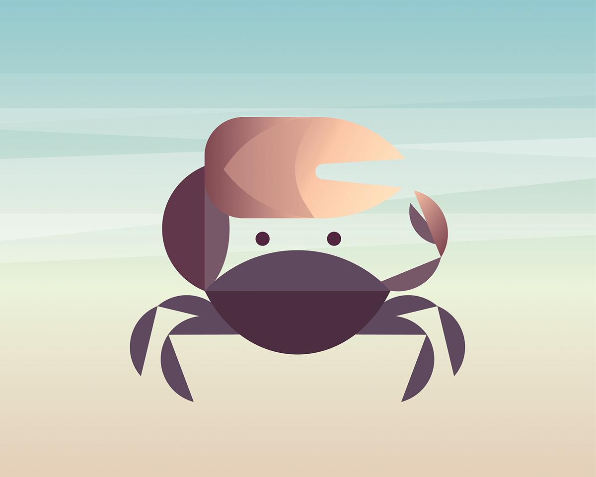 FiddlerCrab.jpg