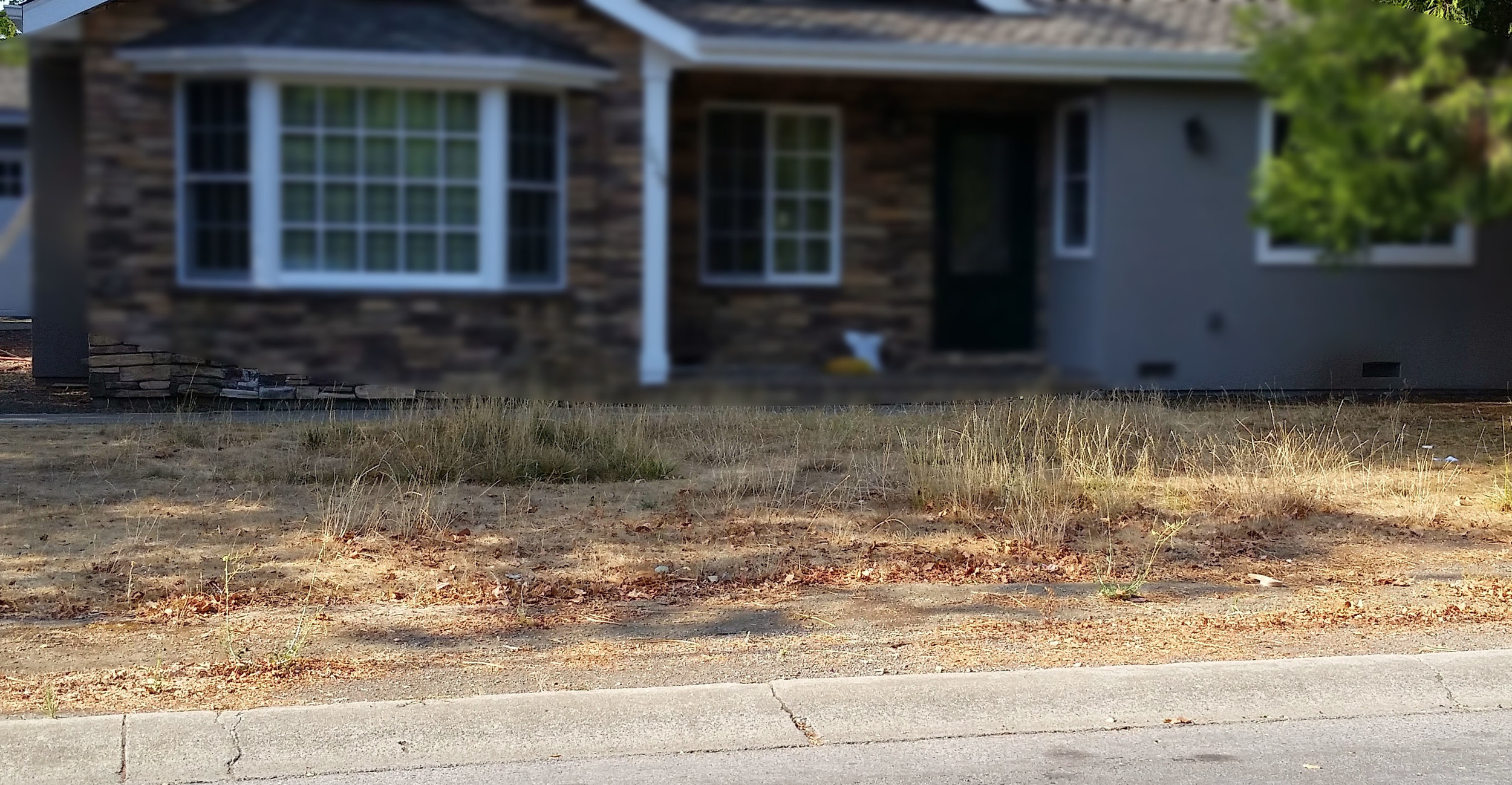 An otherwise beautifully maintained (and recently expanded) home with a neglected front yard (image blurred).