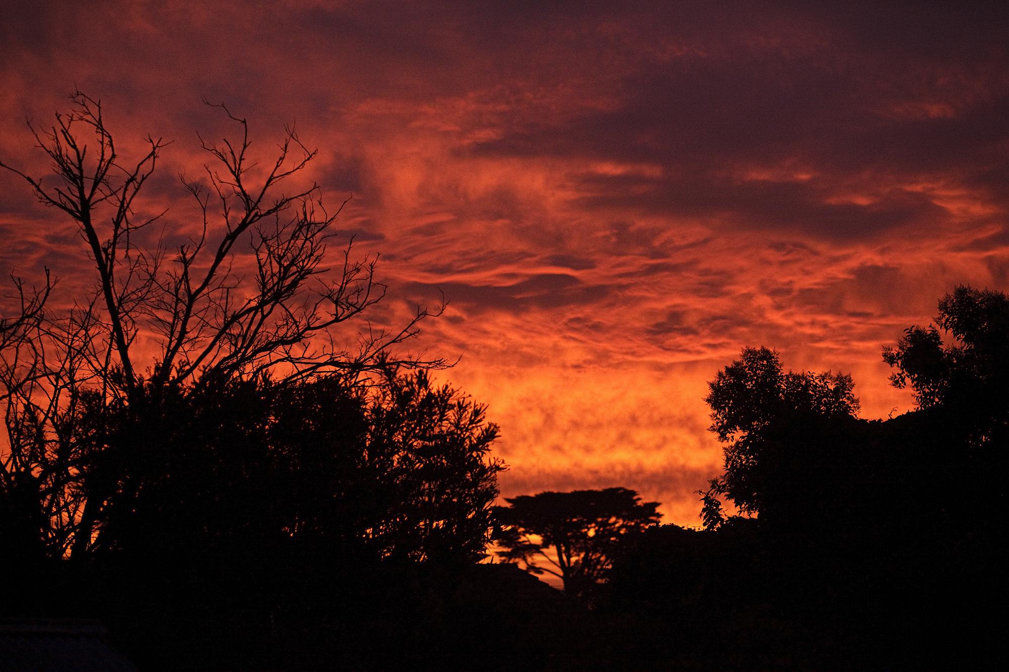Orange Sunset!