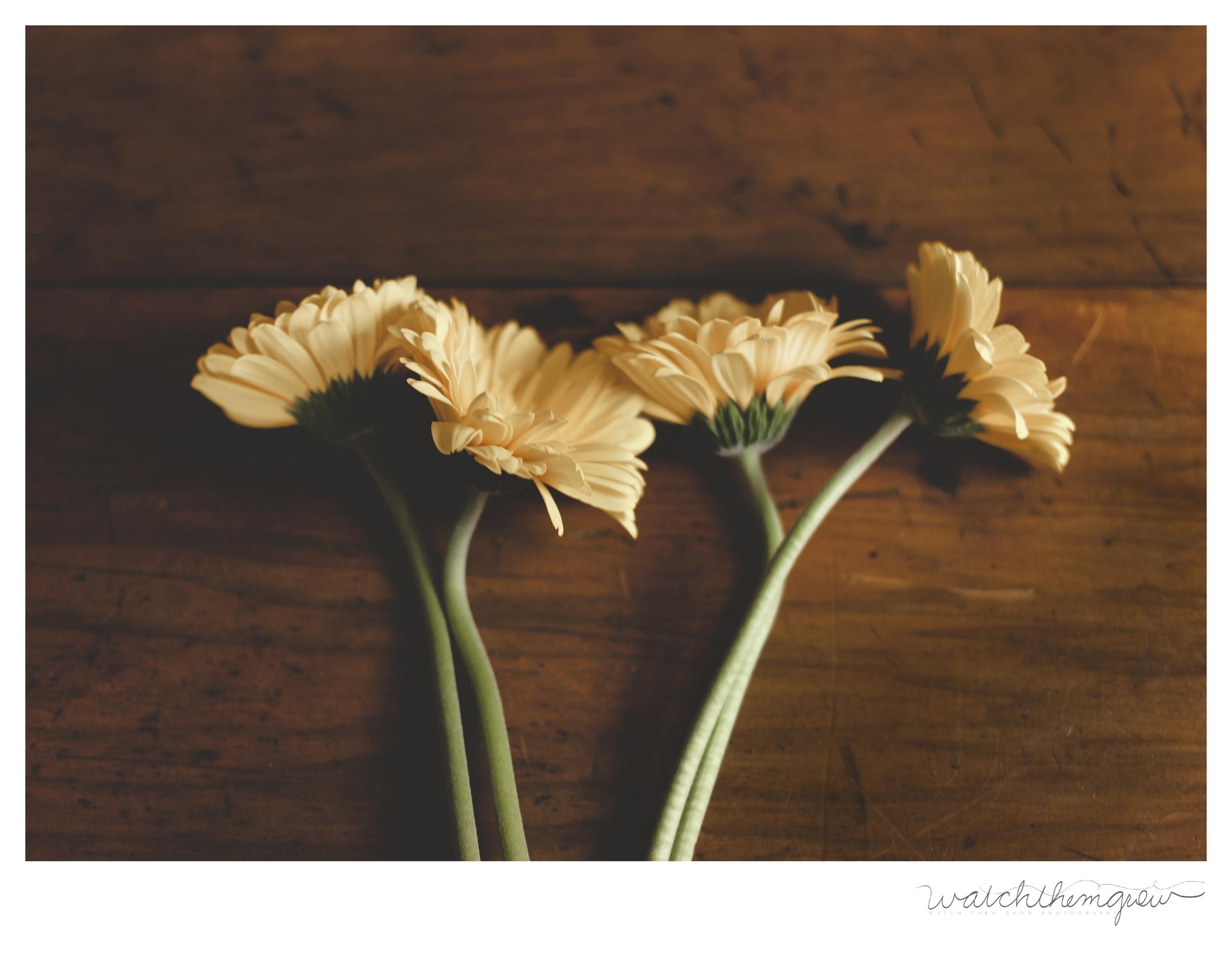 Mum's Day Flowers