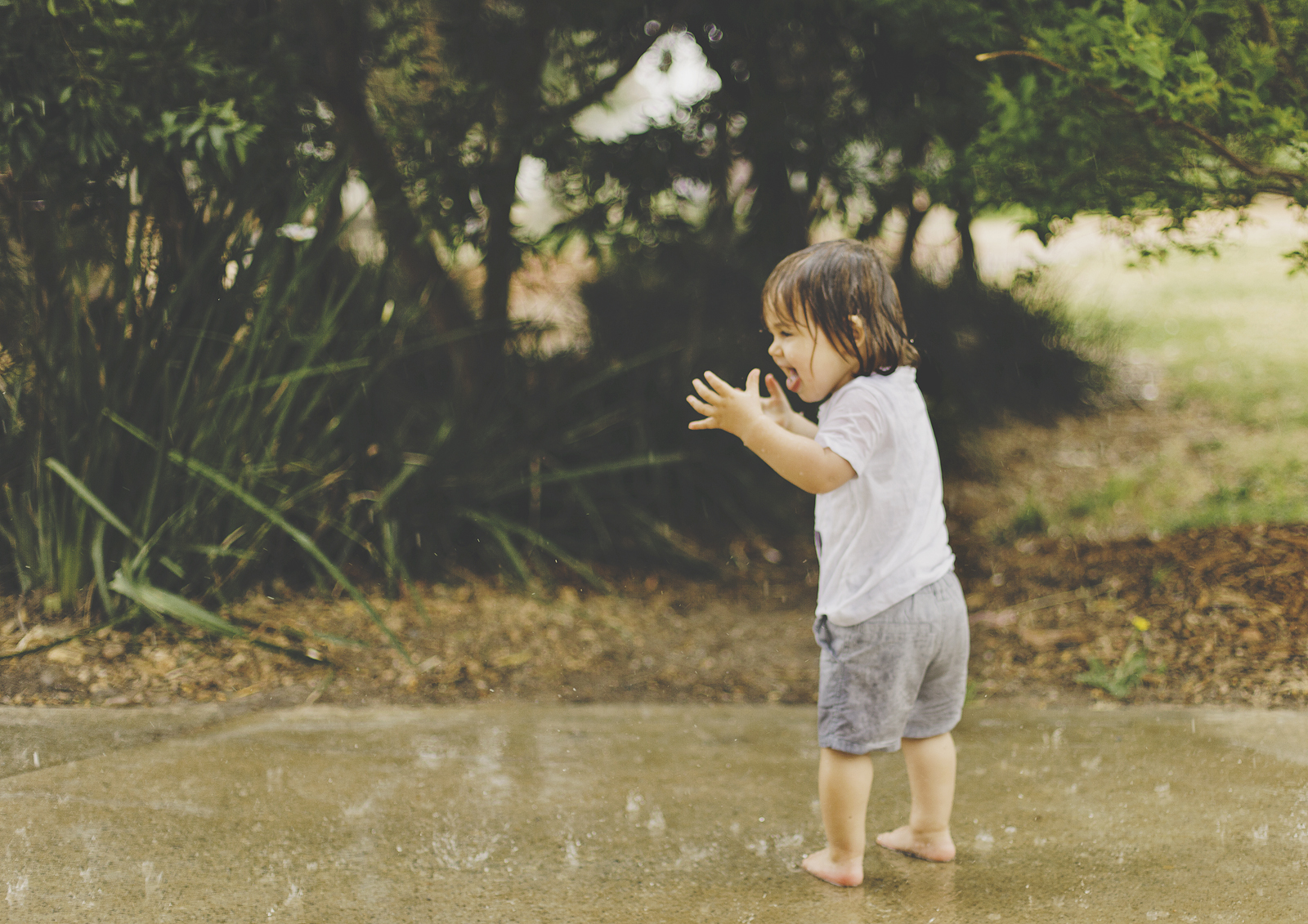 Toddler & Baby Photography Bayside
