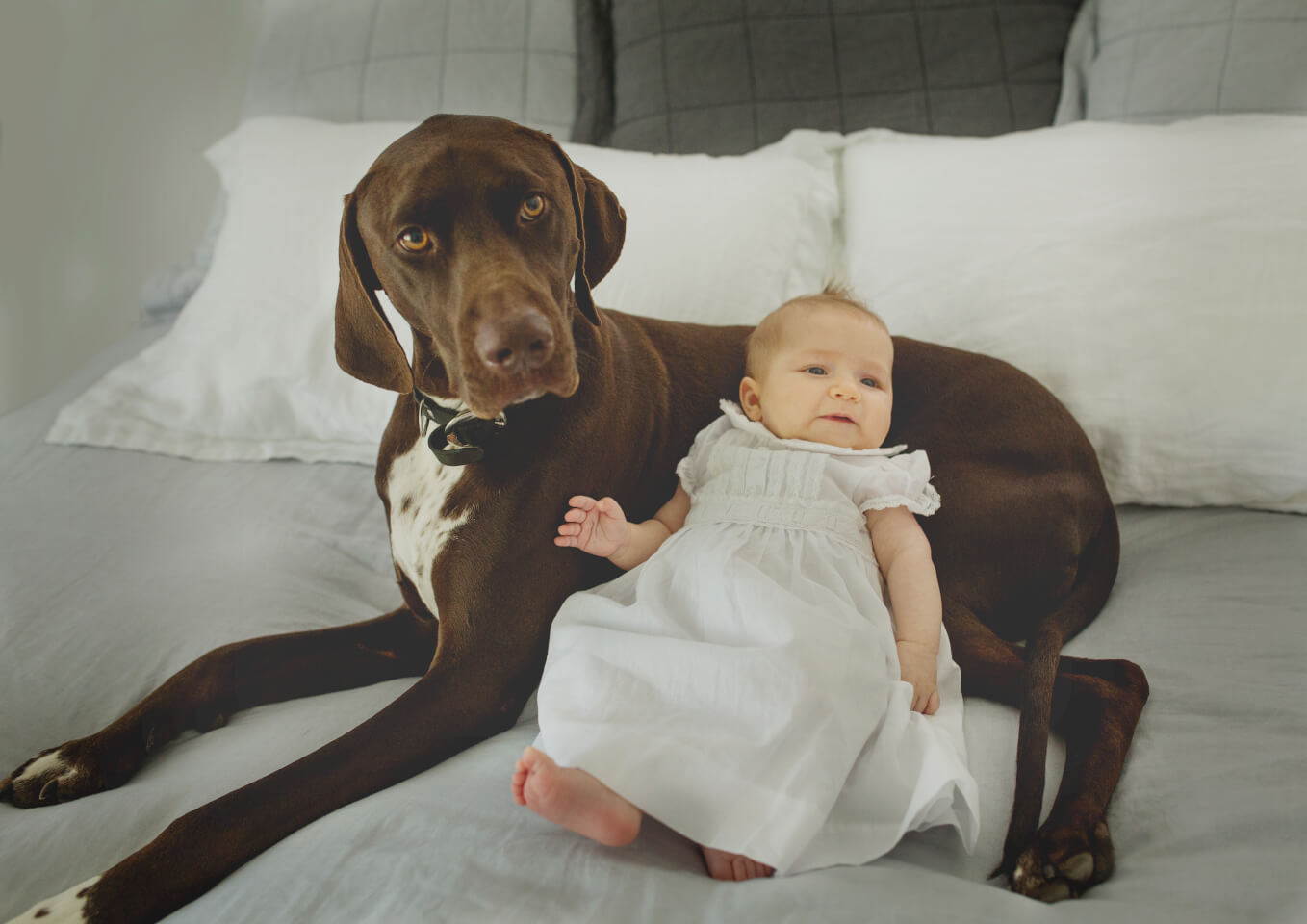 Baby girl and family dog