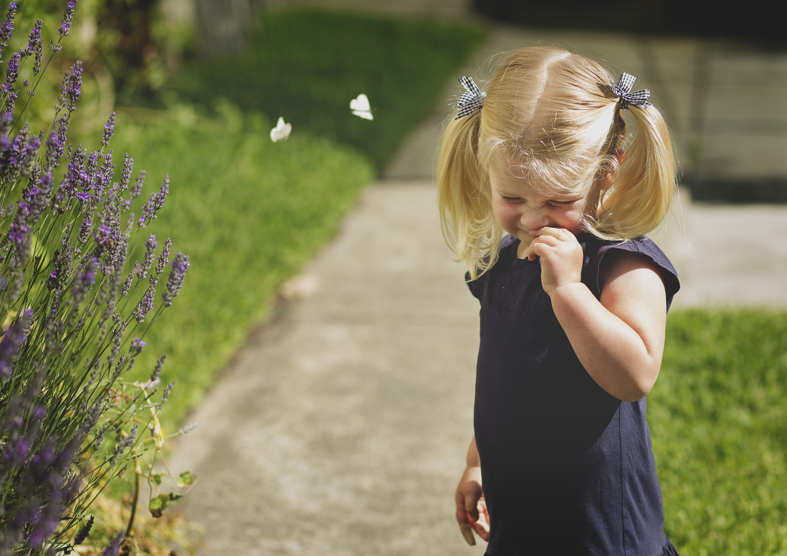 Toddler playing with the butterflies!