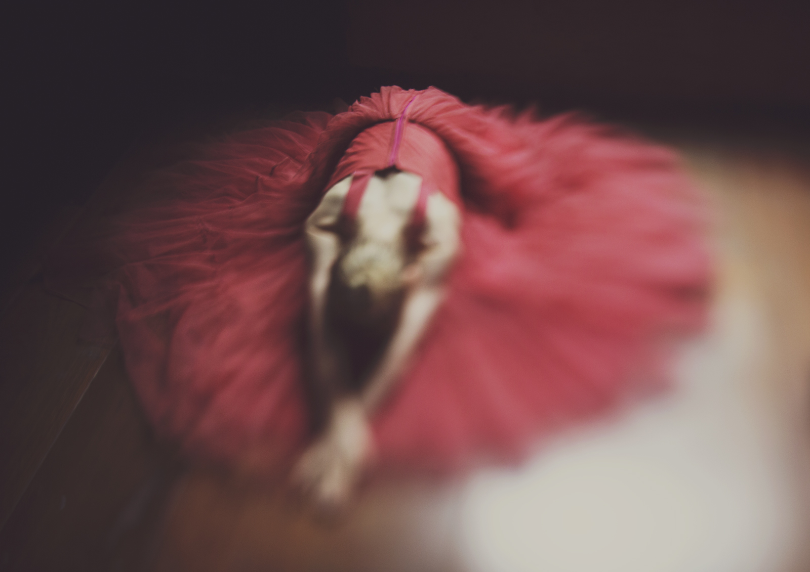 Freelensed photo of a ballerina!