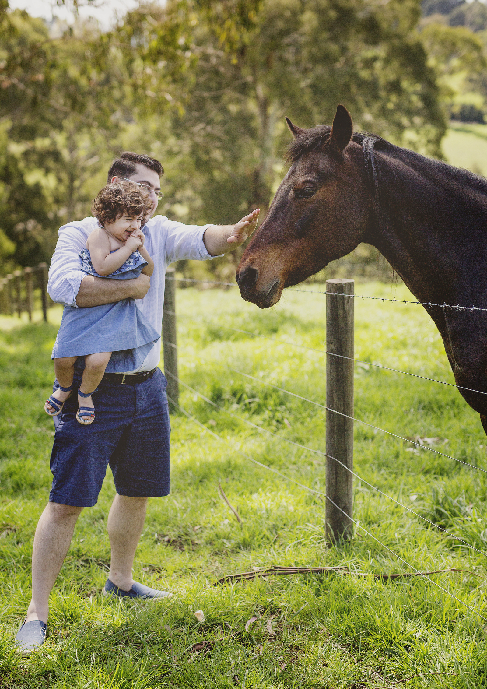 Toddler patting a horse with her dad