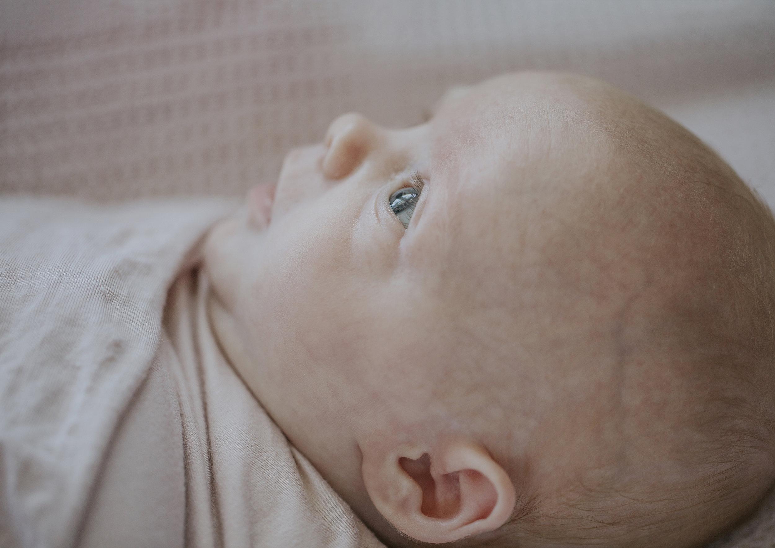 Baby Lifestyle Photography Bayside Melbourne