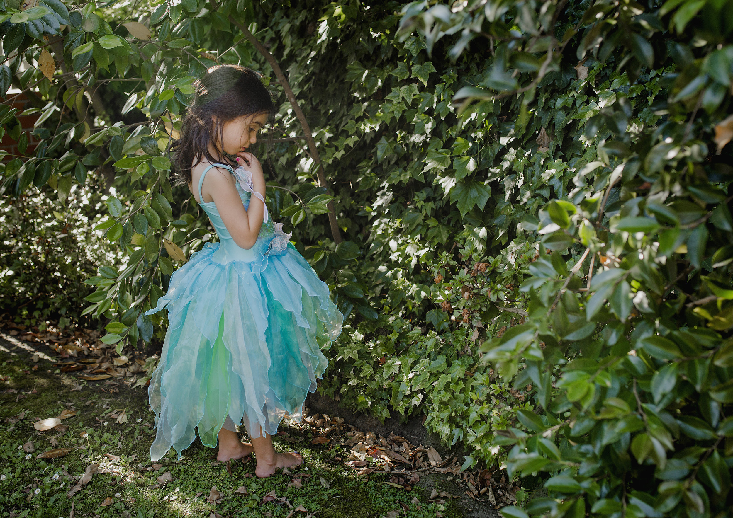 Fairies in the garden!