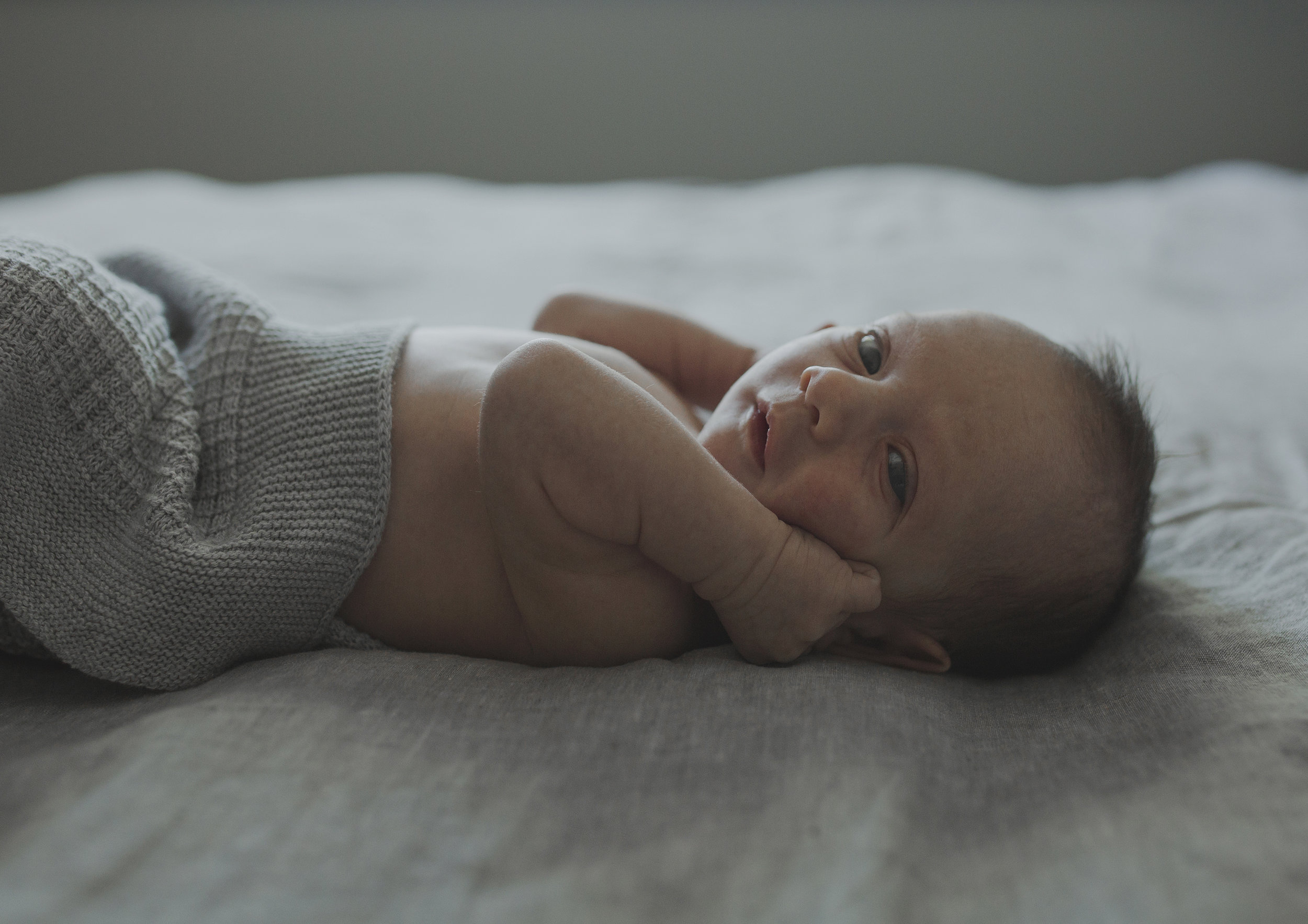 On Location Newborn and Family Photography Bayside