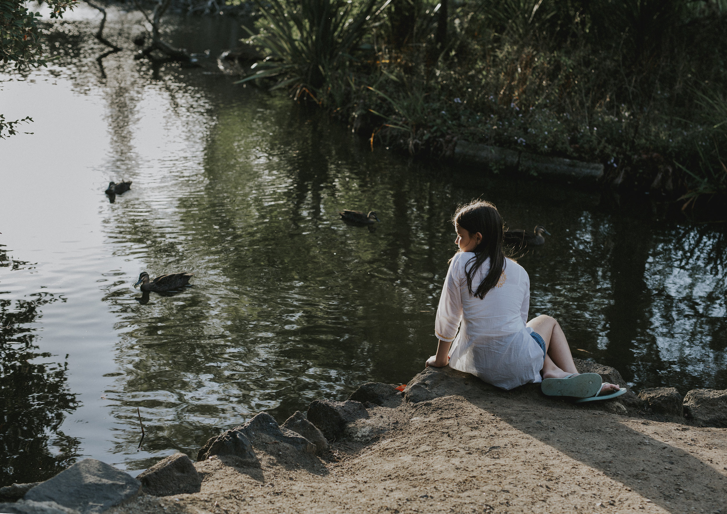 Young girl watching the ducks in the lake