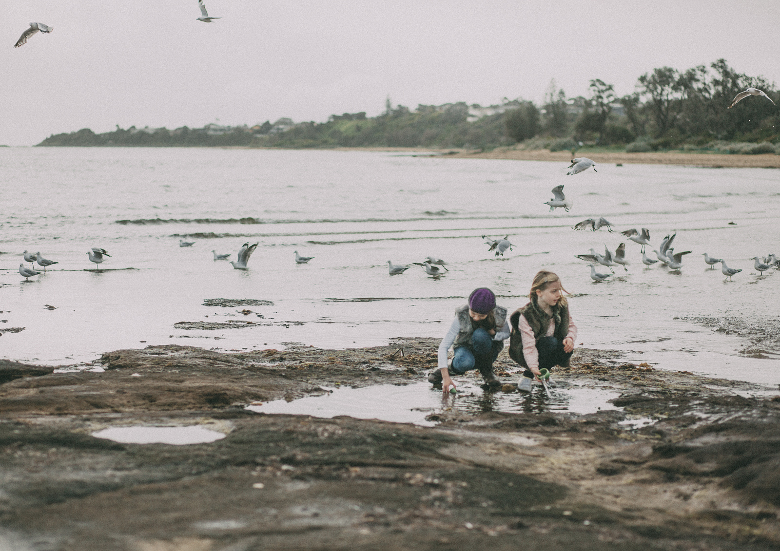 Lifesttyle Children's Photography Bayside Melbourne