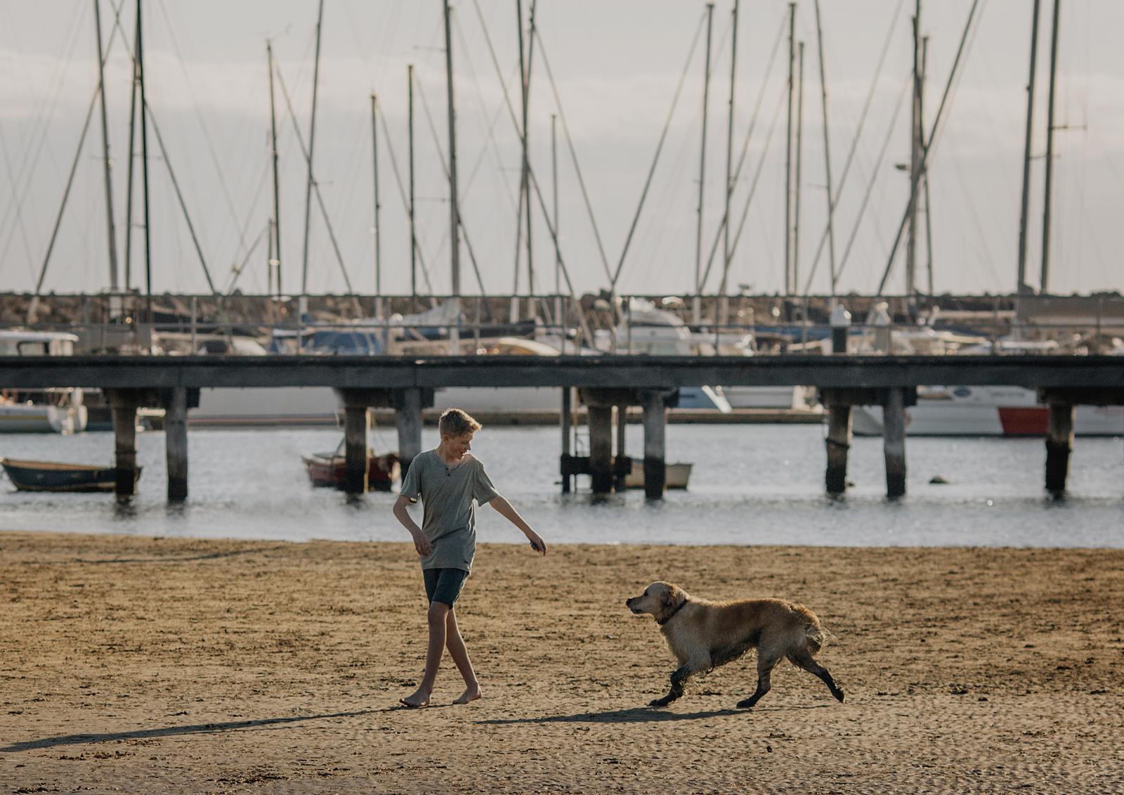 Sandringham Dog Beach Family Photo Shoot