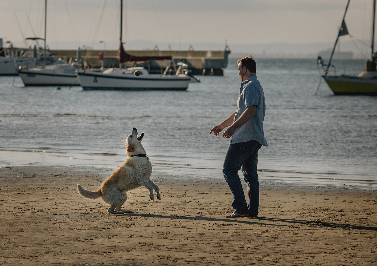 Throwing the ball for his dog