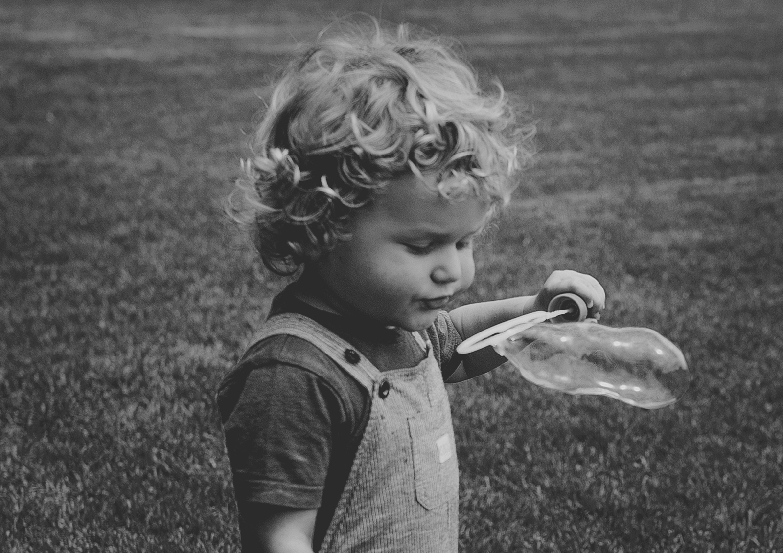 Natural Toddler and Family Photography Melbourne