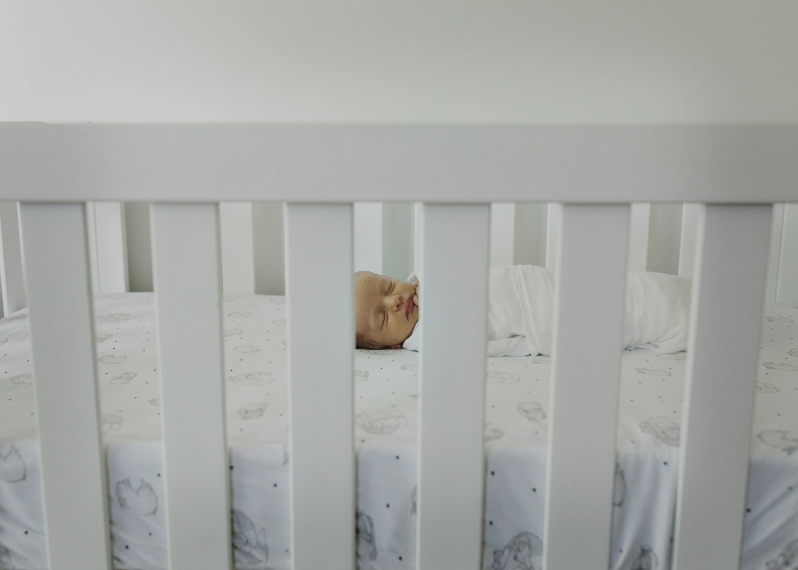 sleeping newborn baby boy in his cot